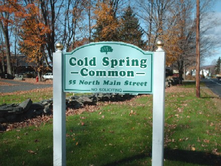 Cold Spring Common